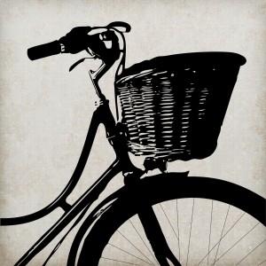 bike-220291