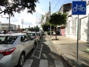 new bike lanes and signs in guadalajara jalisco